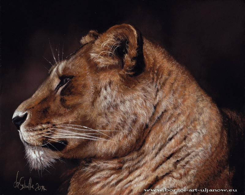 Pastel painting Lioness